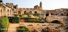 C T O Israel Tours And Travel